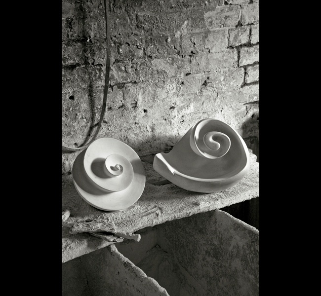 Spiral form and Shell sculpture